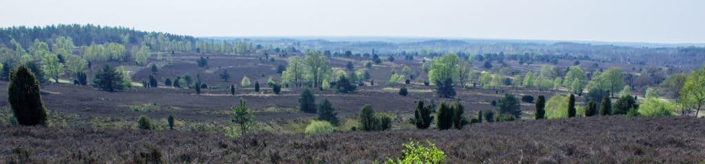 E1 European Long Distance Path - Heide