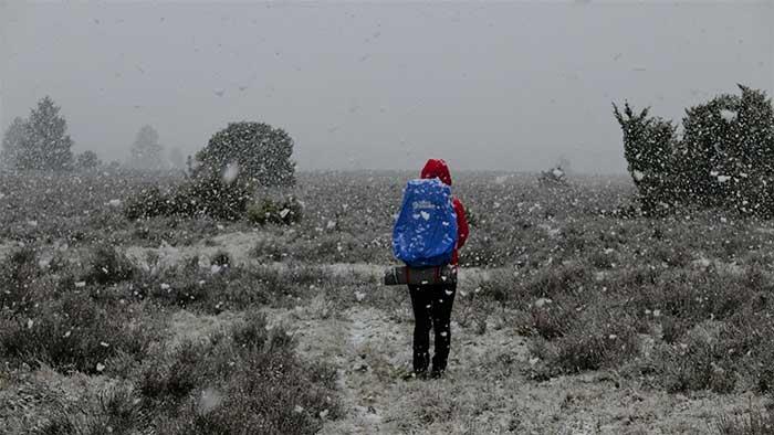 Wildsede in Winter