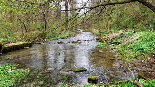 water-rich Luttergrund